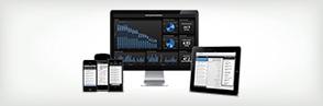 Information Technology & Software Development